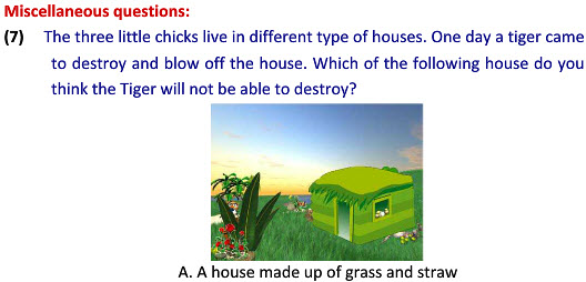 Housing and clothing worksheet for class 2