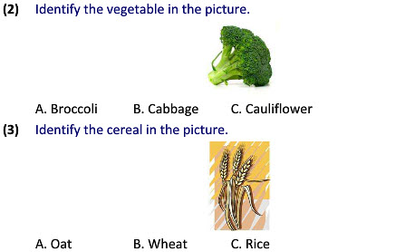 Grade 2 science uses of plants worksheets for students tutorials