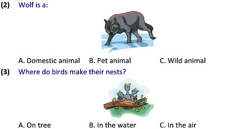 Class 2 online learning wild animals worksheets
