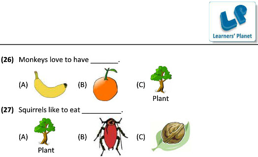 3 Science Worksheets On Eating Habits Of Animals For Kids: Animals Worksheets Pdf At Alzheimers-prions.com
