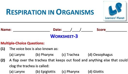7th CBSE science printable worksheets on respiration in organisms