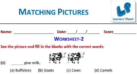 English grammar Worksheets on  Matching Pictures for first graders