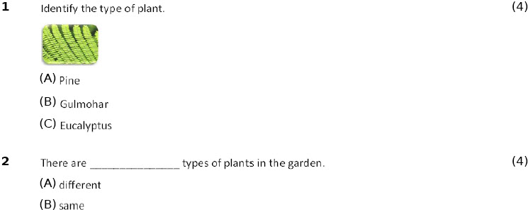 4th class science worksheets the green plants