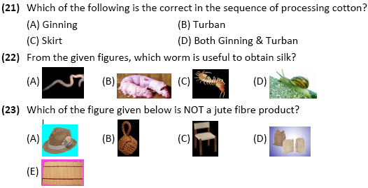 online olympiad science worksheet Fibre to Fabric