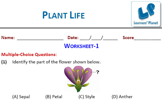 class 6 science olympiad printable worksheets plant life