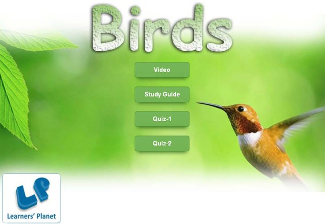 Kindergarten english interactive quizzes on Birds