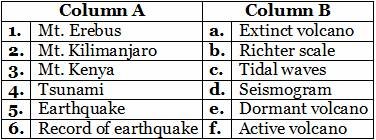 Volcanoes, Earthquakes and Tidal Waves worksheet for 5th CBSE science