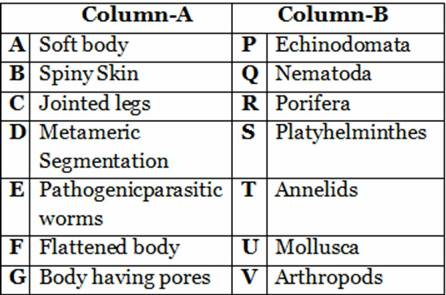 9th CBSE diversity in living organisms worksheets