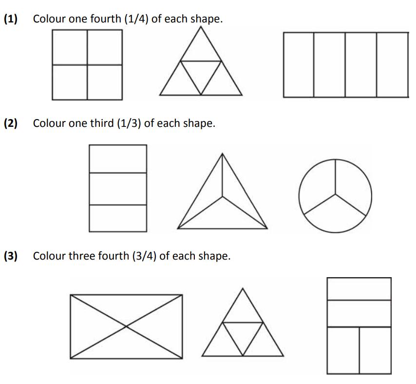Ncert Mathematics Study Material Fractions Worksheet Grade 2